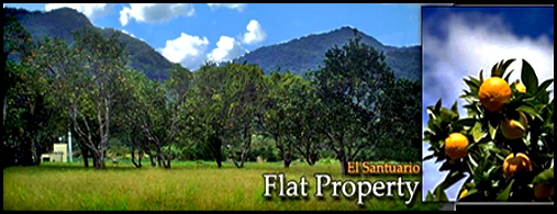 Flat Property