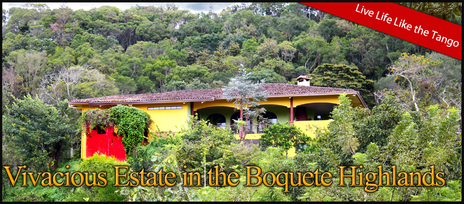 Vivacious-Estate-in-the-Boquete-Highlands