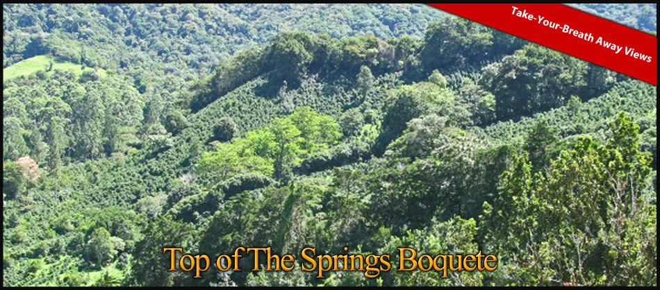 top-of-the-springs-boquete-10a-11