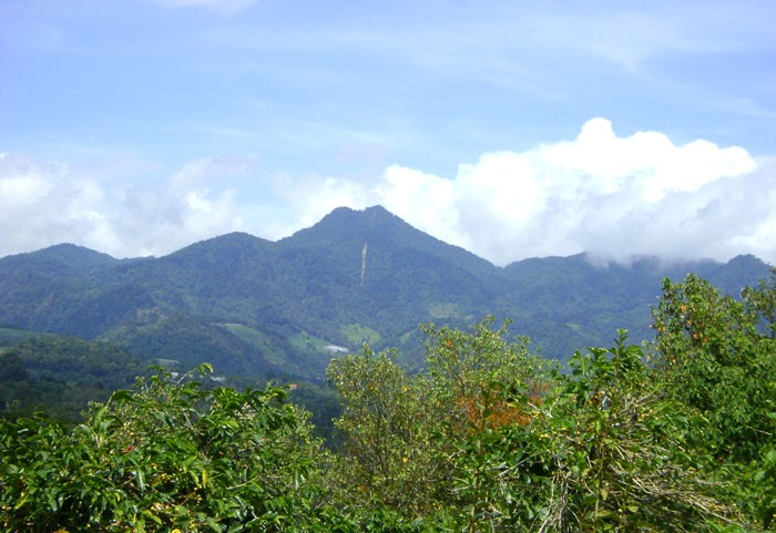 Lot Sizeacres2227 Property Type Land And Lots Location Volcancito Boquete Panama Description High Up On The El Salto Loop Road Is