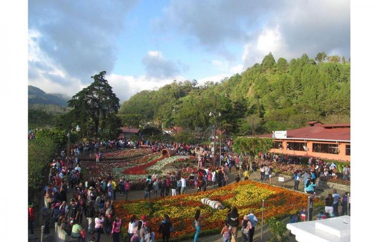Boquete fair 2015