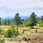 Land-Volcan