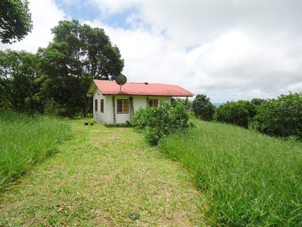Real estate with cabin for sale in la estrella jaramillo for Cabin lots