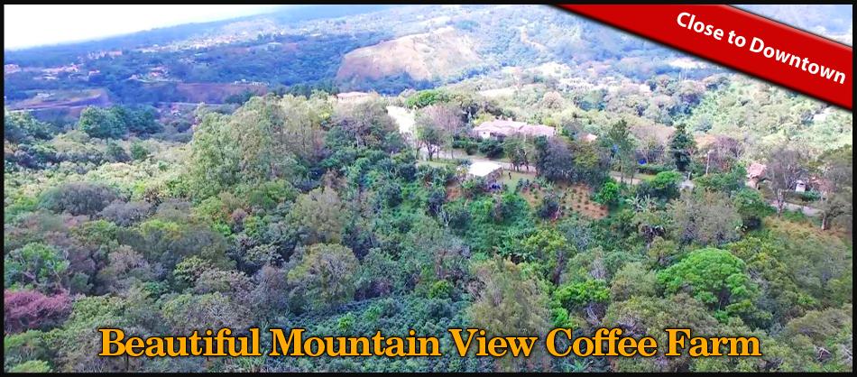 Beautiful-Mountain-View-Coffee-Farm.jpg