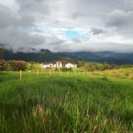 Neighboring Estate Home
